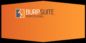 Burp Suite Professional - A key part of any web application penetration testing methodology