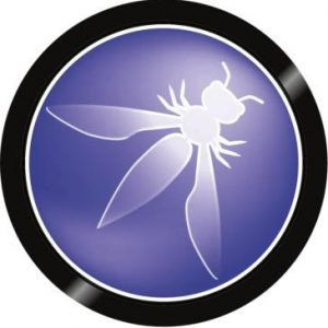 what is owasp