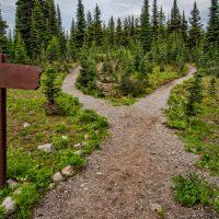 path to domain admin